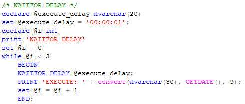 waitfordelay_code