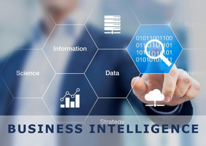 Business Intelligence/Analytics