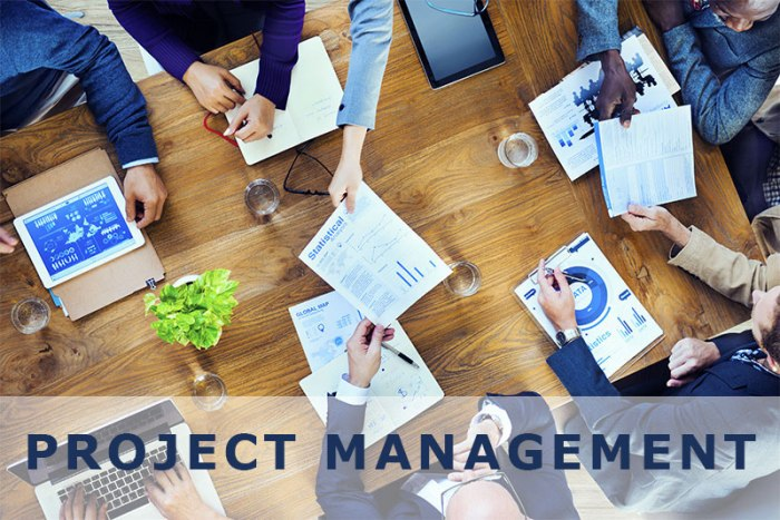 Project Management/Leadership